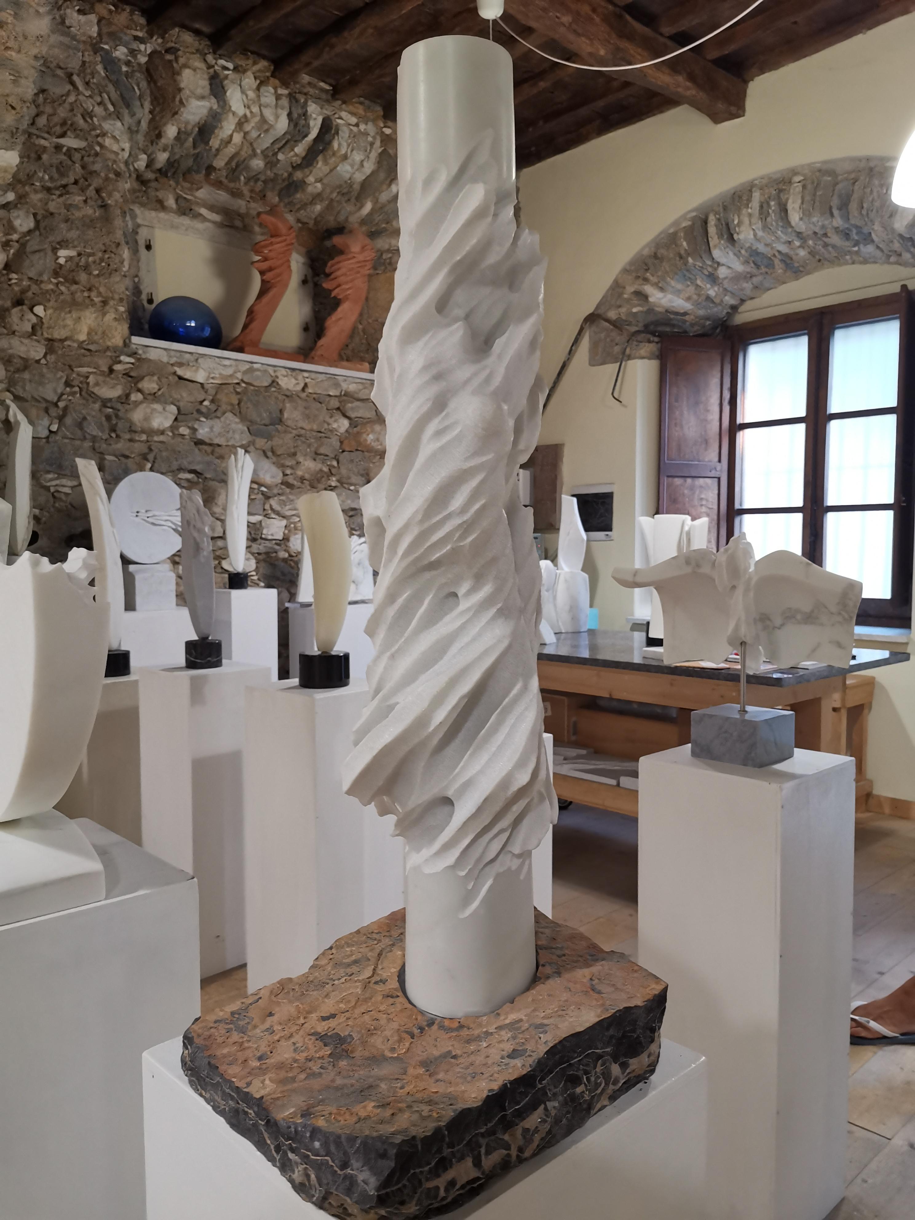 Francesco Cremoni studio - Carrara Studi Aperti
